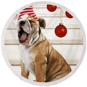 Holiday Bulldog Puppy  Round Beach Towel