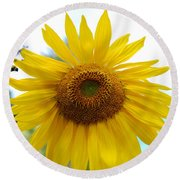 Bumble Bee And Sunflower Round Beach Towel