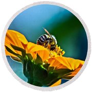 Bumble Bee I Round Beach Towel
