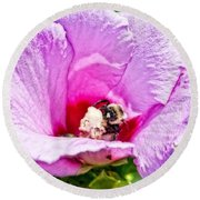 Bumble Bee Iv Round Beach Towel