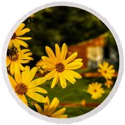 Bumble Bee On A Western Sunflower Round Beach Towel