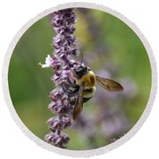 Bumble On Sage Round Beach Towel