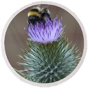 Bumble Thistle Round Beach Towel