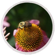 bumblebee and Echinacea Round Beach Towel