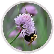 Bumblebee On Clover Round Beach Towel