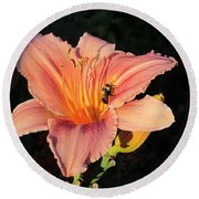 Bumblebee On Daylily Round Beach Towel