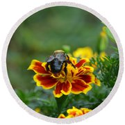 Bumblebee On Marigold Round Beach Towel