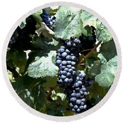 Bunch Of Grapes Round Beach Towel by Heiko Koehrer-Wagner