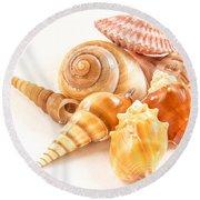 Bunch Of Shells Round Beach Towel