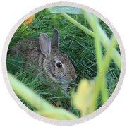 Bunny Rabbit Round Beach Towel