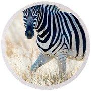 Burchells Zebra Equus Quagga Round Beach Towel