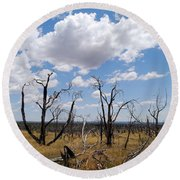 Burned Trees On Colorado Plateau Round Beach Towel