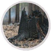 Burnt Tree Trunk Round Beach Towel