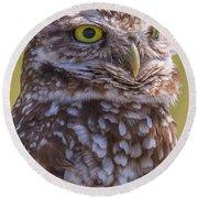 Burrowing Owl 001 Round Beach Towel