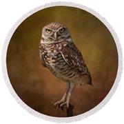 Burrowing Owl Portrait Round Beach Towel by Kim Hojnacki