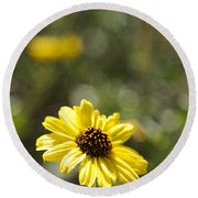Bush Sunflower 1 Round Beach Towel