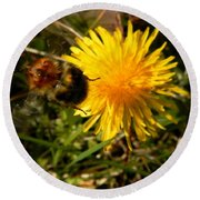 Bussy Bee And Dandelion Round Beach Towel