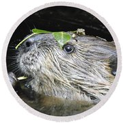 Busy Beaver Round Beach Towel