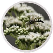 Busy Bee On White Round Beach Towel