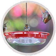 Busy Day At The Feeder Round Beach Towel