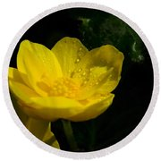 Buttercup And Dew Drops Round Beach Towel