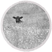 Buttercup In Black-and-white Round Beach Towel by JD Grimes