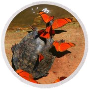 Butterflies And Turtle Round Beach Towel