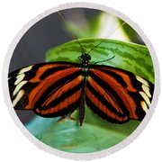 Butterflies Are Free Round Beach Towel