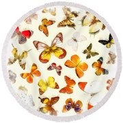 Butterflies Square Round Beach Towel