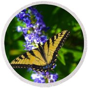 Butterflly Bush And The Swallowtail Round Beach Towel