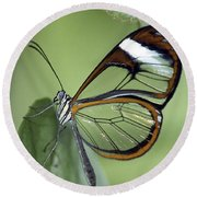 Butterfly 005 Round Beach Towel