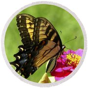 Butterfly 011 Round Beach Towel