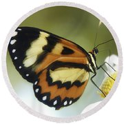 Butterfly 013 Round Beach Towel