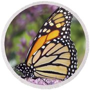 Butterfly 024 Round Beach Towel