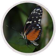 Butterfly 025 Round Beach Towel