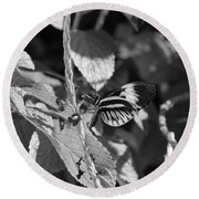 Butterfly 1 Round Beach Towel