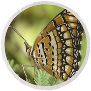 Butterfly 18 Round Beach Towel
