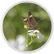 Butterfly  2 Round Beach Towel