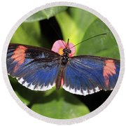 Key West Butterfly 3 Round Beach Towel