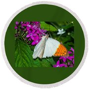Butterfly 63 Round Beach Towel