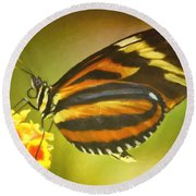 Butterfly 8 Round Beach Towel