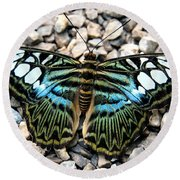Butterfly Amongst Stones Round Beach Towel