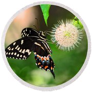 Butterfllies And The Crystal Balls Round Beach Towel