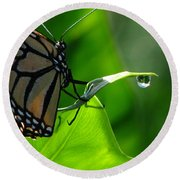 Butterfly And Water Round Beach Towel