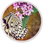 Butterfly Art - Hanging On - By Sharon Cummings Round Beach Towel by Sharon Cummings