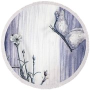Butterfly At The Veil Round Beach Towel