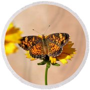 Butterfly Baby Round Beach Towel