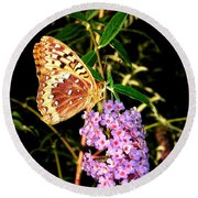 Butterfly Banquet 2 Round Beach Towel by Will Borden