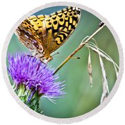 Butterfly Beauty And Little Friend Round Beach Towel