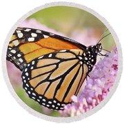 Butterfly Beauty-monarch II  Round Beach Towel